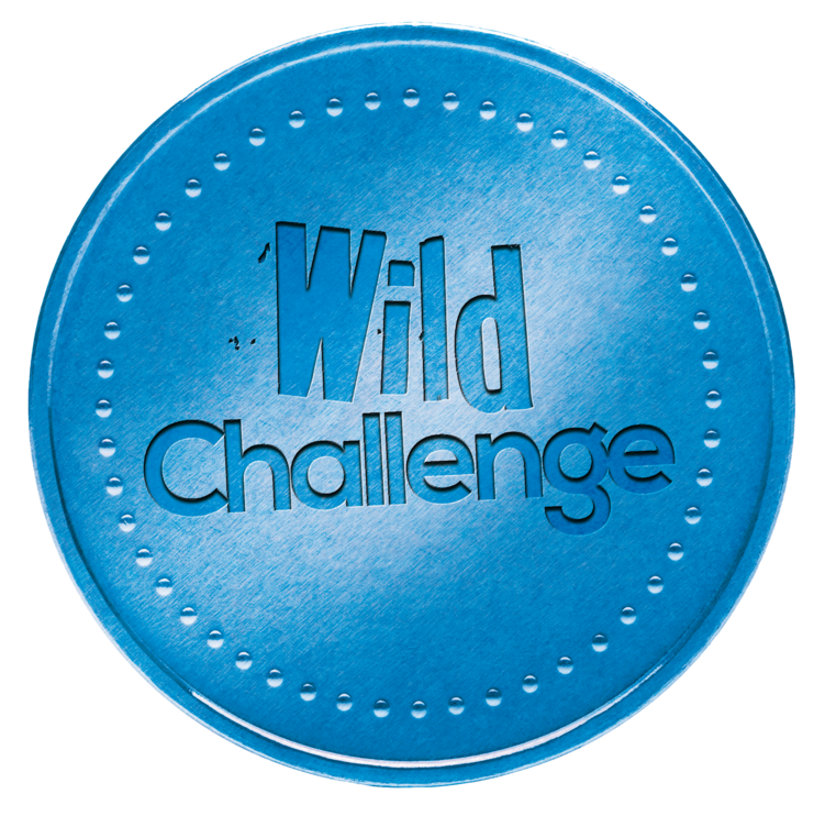 Wild Challenge badge logo
